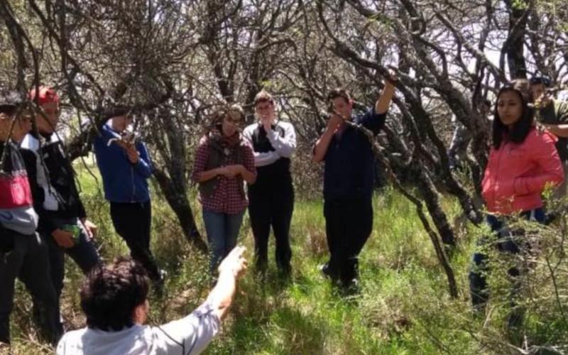 Proyecto Interinstitucional de Formación en Manejo de Bosque Nativo y Vivero en la Escuela Agrotécnica De Guatraché - Segunda Etapa